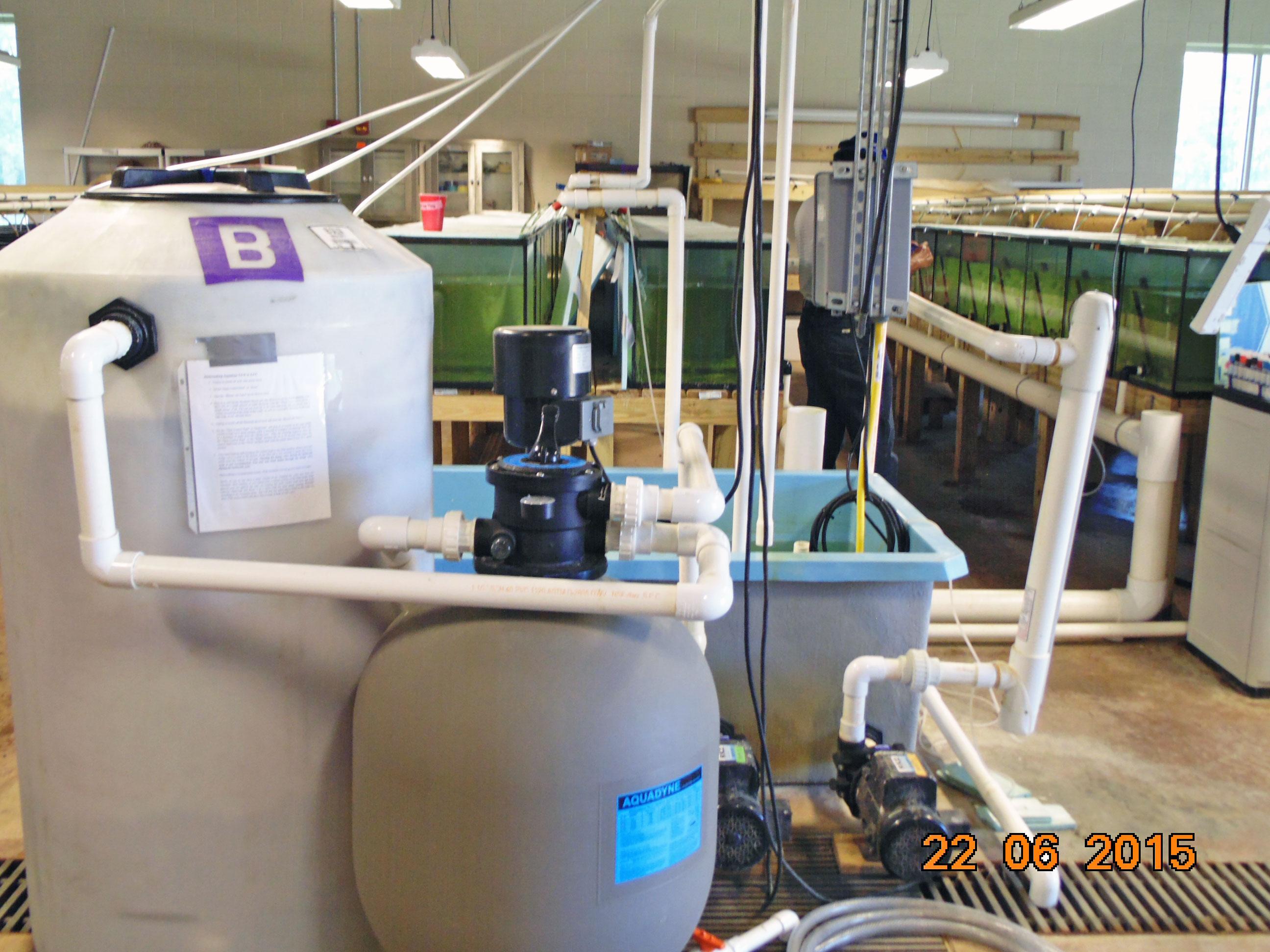 Filtro biológico (biofiltro) com substratos plásticos em movimento (cilindro mais alto) ao lado de um filtro mecânico de esferas plásticas em um laboratório de nutrição de peixes da Universidade de Auburn, Alabama, USA