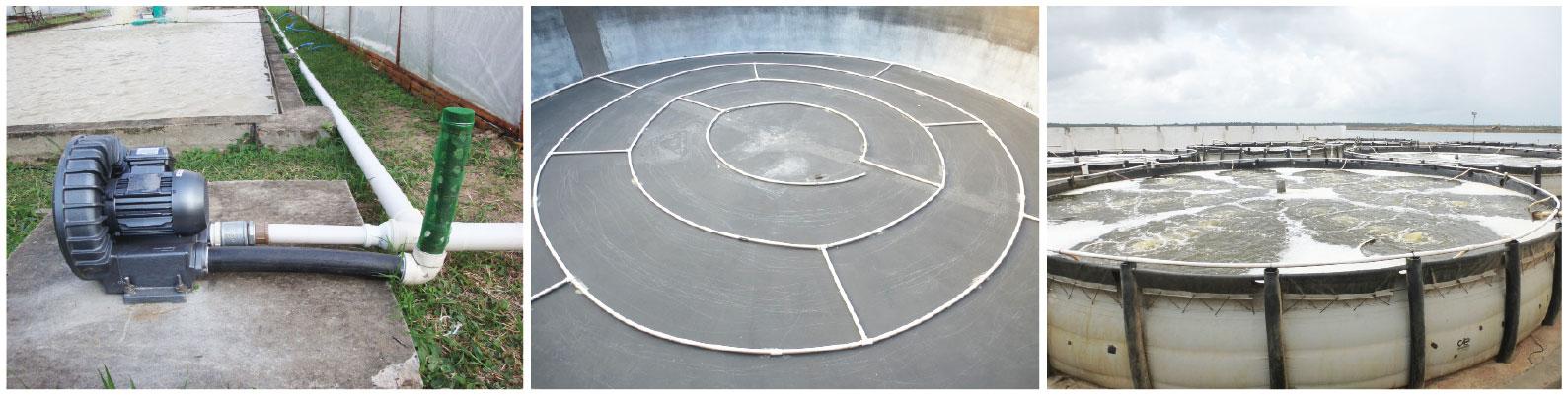 Compressor radial (soprador de ar) e rede de canos para distribuição do ar para as unidades de cultivo Fundo de um tanque berçário de camarão com uma rede de canos perfurados para prover aeração Tanque de vinil usado como berçário de camarão recebendo aeração por ar difuso