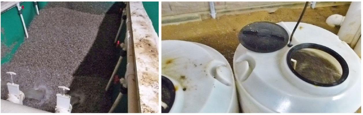 Biofiltros com substratos de plástico contidos em tanques e mantidos em suspensão e constante movimento por meio de um sistema de ar difuso colocado no assoalho dos tanques